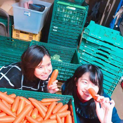 【東京19卒:くだらないことワーク】エルエムシー流0円食堂開催しました!